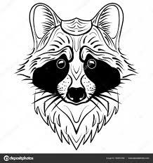 эскиз лица енот рука нарисованные векторный рисунок векторное