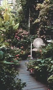 create a shade garden