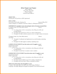 6 Basic Resume Template For First Job Action Plan Template