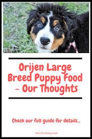 Orijen Puppy Feeding Chart Orijen Large Breed Puppy Food Our Thoughts Stop That Dog