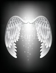 angel wing stock vector colourbox