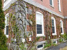 Ivy Day (United States) - Wikipedia