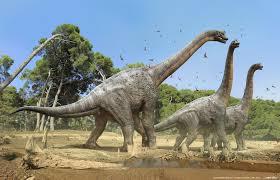 Afbeeldingsresultaat voor brachiosaurus