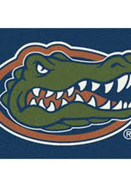 florida gators 3x5 spirit interior rug image 1