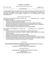 Stallion Resume Template Amethyst Purple Resume Objective For