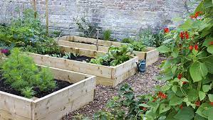 how to start a sustainable garden at