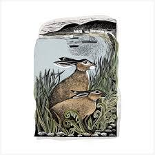 Rathlin Golden Hares - Angela Harding   Art Love: Illustration ...