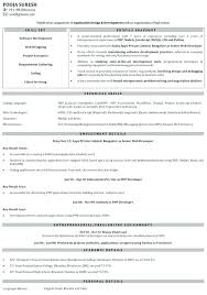 Cake Decorator Resume Enchanting Sample Floral Designer Resume Good Sample Resume Format