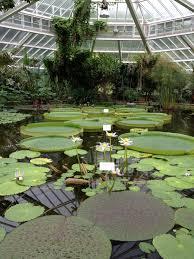 Jardin Botanique Bruxelles Meise