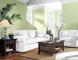 Good Colors To Paint A Living Room Living Room Warm Green Colors Navpa2016