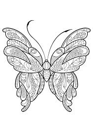 20 Girly Cockroach Coloring Pages Pictures And Ideas On Weric