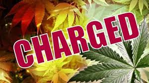 CBC News Barbados - Two staff members of a local manufacturing company have  been held following a two million dollar drug bust at the Bridgetown Port  last Friday. 21 boxes labelled Tru
