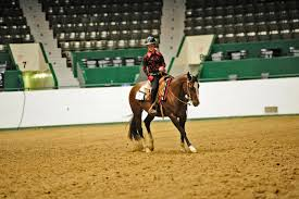 2015 State 4h Show Barl Stable