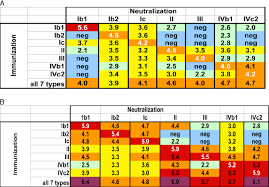 Fafi Numbers Chart Bkv Neutralizing Responses In Mice The Chart Shows The