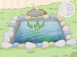 how to make a mini pond with pictures