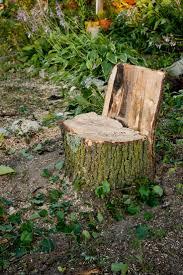 Tree Stump Seats 30 Best Tree Stump Garden Ideas Images On Pinterest Garden Ideas