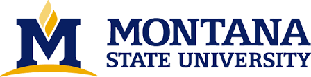 Montana State University Logo Download Page - Creative Services ...