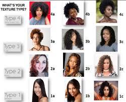 15 Black Hair Type Chart Image Of Black Hair Regimage Co
