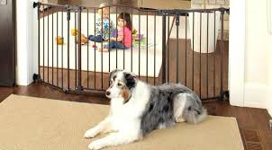 extra wide dog gates outdoor inch pet gate review best and comparison