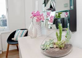ways to decorate an office. Decorations : Beautiful Small Plants Cactus And Succulents To Decorate Home Office Using White Wooden Table Black Round Chair Stylish Ways An