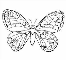 Small Picture Page Free Printable Pages Mini Mini Butterfly Coloring Sheet