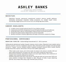 Fresh Downloadable Resume Template Word Three Blocks