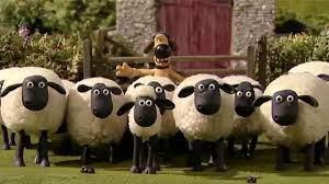 Shaun the Sheep – Những chú cừu thông minh – Season 4