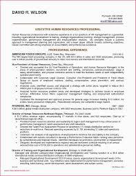 Resume Profile Header Examples 10 11 Profile Statement For Resume Samples Elainegalindo Com