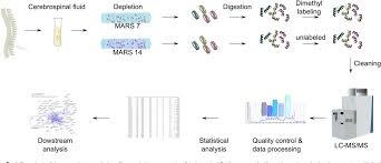 Figure 1 From Spinal Cord Stimulation Alters Protein Levels