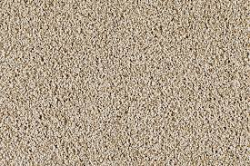 cream carpet texture. Casa Bella Honey Cream Carpet Texture