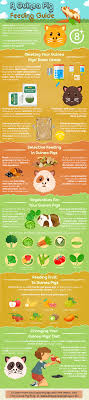 Want To Know More About The Diet Of Guinea Pigs Or Want A