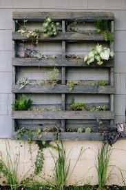 Anna & Rhoda of Loot Finer Goods. Garden EdgingPlant WallLive ...