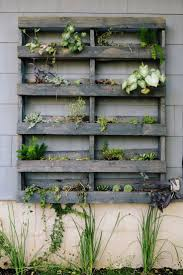 Anna & Rhoda of Loot Finer Goods. Live PlantsPlant WallGarden ...