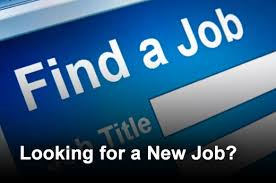 top job search sites for it professionals   previous top 12 job search sites for it professionals1