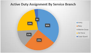California State Active Duty Pay Chart Understanding Military Assignment Dynamics In The U S A