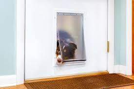 installing a dog door in a metal