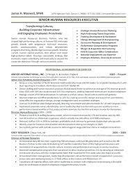 Sample Executive Resume Template Marketing Resume Example Gallery ...