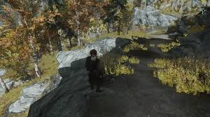Cannot Figure Out How To Fix Grass Shadows Lighting Problem