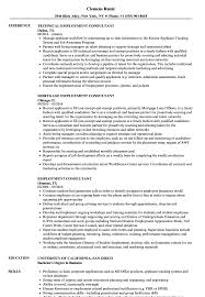 Sample Employment Resume Employment Consultant Resume Samples Velvet Jobs