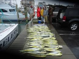 Hatteras Island Fishing Report March 31 2012