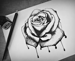 Small Picture 12 best rose images on Pinterest Drawings Rose drawings and