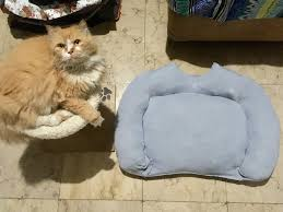 diy cat bed made out of an old sweater he still prefers his old bed though cat