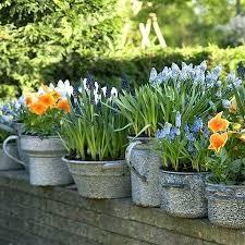 unique flower pots unique plant pots quirky flower pots chairs table green  white door interesting unique