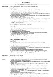 Program Manager Resume Examples Supply Chain Program Manager Resume Samples Velvet Jobs