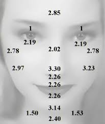 Dermaroller Size Guide Based On Facial Skin Thickness