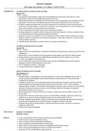 Team Lead Job Description Resume Cover Letter Examples For