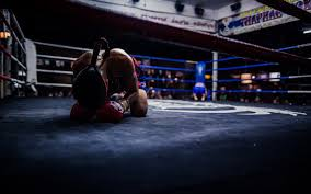 boxing wbc chions ring deontay wilder wbc chion wallpapers