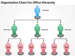 Organization Chart For Office Hierarchy Ppt Sample Business