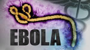 Resultado de imagem para ebola