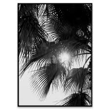 <b>Palm trees</b> poster from Paper Collective by Norm Architects
